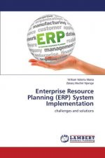 Enterprise Resource Planning (ERP) System Implementation