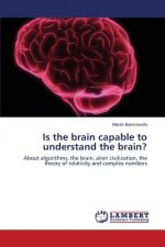 Is the brain capable to understand the brain?