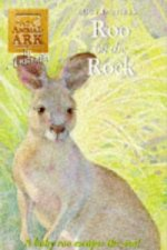 Roo on a Rock