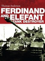 Ferdinand and Elefant Tank Destroyer