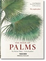 Martius. The Book of Palms