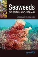 Seaweeds of Britain and Ireland