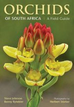 Field Guide Orchids of South Africa