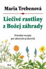 Liečivé rastliny z Božej záhrady