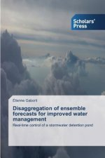 Disaggregation of ensemble forecasts for improved water management