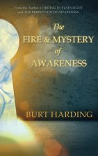 Fire & Mystery of Awareness