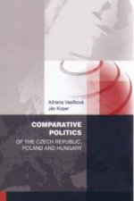 Comparative politics of the Czech Republic, Poland and Hungary