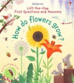 Lift-The-Flap First Questions and Answers How Do Flowers Gro