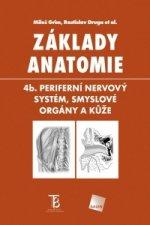 Základy anatomie 4b.