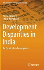 Development Disparities in India