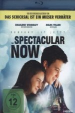The Spectacular Now - Perfekt ist jetzt, 1 Blu-ray