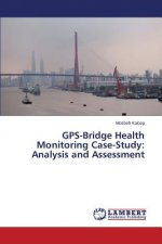 GPS-Bridge Health Monitoring Case-Study: Analysis and Assessment