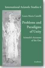Problems and Paradigms of Unity.