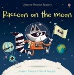 Raccoon on the Moon