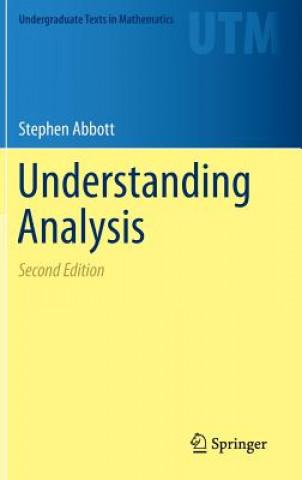 Understanding Analysis