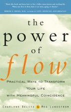 Power of Flow