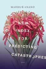 New Index for Predicting Catastrophes