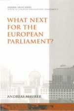 What Next for the European Parliament?