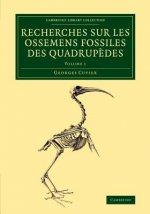 Recherches sur les ossemens fossiles des quadrupedes