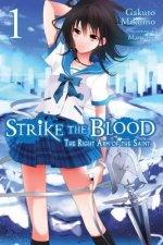 Strike the Blood, Vol. 1 (light novel)