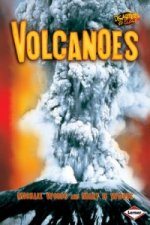 Volcanoes. Michael Woods and Mary B. Woods