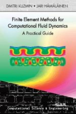 Finite Element Methods for Computational Fluid Dynamics