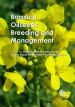 Brassica Oilseeds Breeding and Management