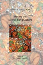 Tracing the New Indian Diaspora