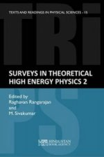 Surveys in Theoretical High Energy Physics-2