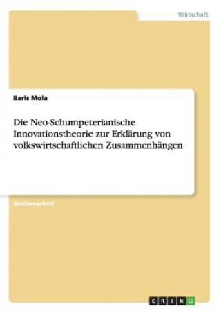 Neo-Schumpeterianische Innovationstheorie zur Erklarung von volkswirtschaftlichen Zusammenhangen