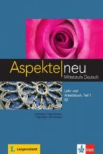 Lehr- und Arbeitsbuch B2, m. Audio-CD. Tl.1