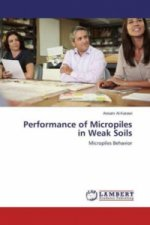 Performance of Micropiles in Weak Soils