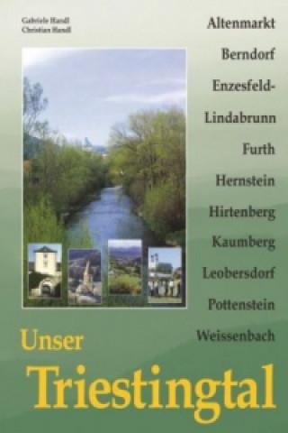 Unser Triestingtal. Bd.1