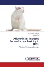 Aflatoxin B1-induced Reproductive Toxicity in Rats: