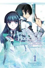 Irregular at Magic High School, Vol. 1 (light novel)
