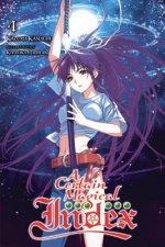 Certain Magical Index, Vol. 4 (light novel)