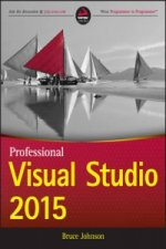 Professional Visual Studio