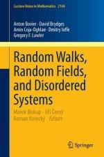Random Walks, Random Fields, and Disordered Systems