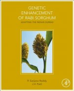 Genetic Enhancement of Rabi Sorghum