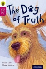 Oxford Reading Tree Story Sparks: Oxford Level 10: The Dog o