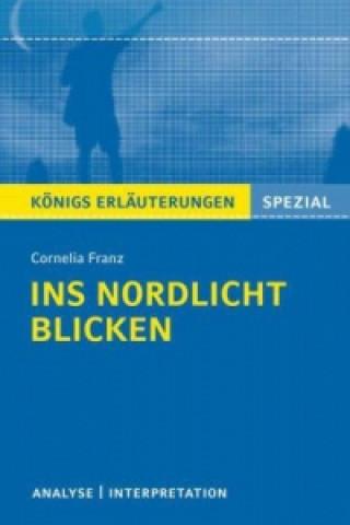 Cornelia Franz Ins Nordlicht blicken