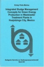 Integrated Sludge Management Concepts for Green Energy Production in Wastewater Treatment Plants in Huejotzingo City, Mexico