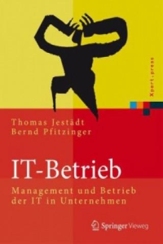 IT-Betrieb