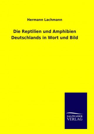 Die Reptilien und Amphibien Deutschlands in Wort und Bild