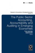 Public Sector Accounting, Accountability and Auditing in Emerging Economies