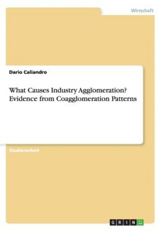 What Causes Industry Agglomeration? Evidence from Coagglomeration Patterns