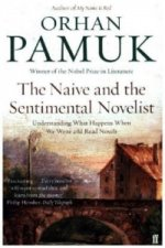 Naive and the Sentimental Novelist