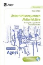 Peter Stamm 'Agnes', m. CD-ROM