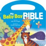 My Baby Boy Bible