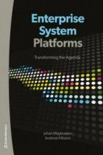 Enterprise System Platforms